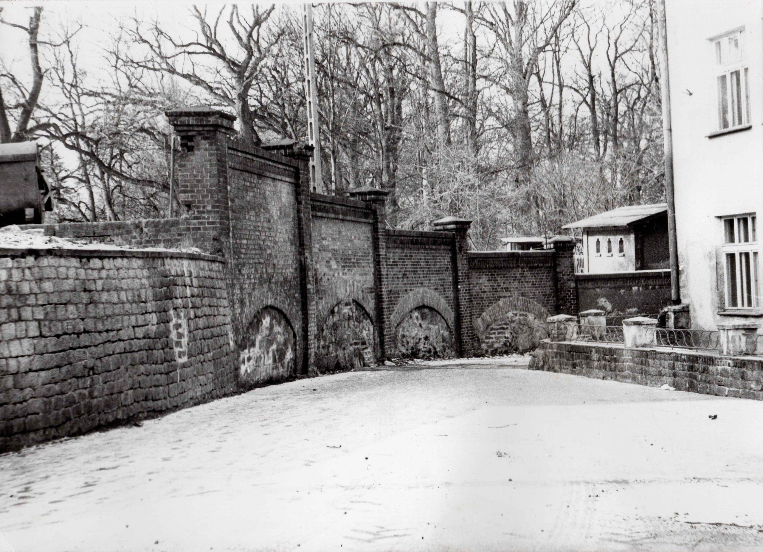 Ewidencja żarowskiego założenia ogrodowo-parkowego 1987 (17)