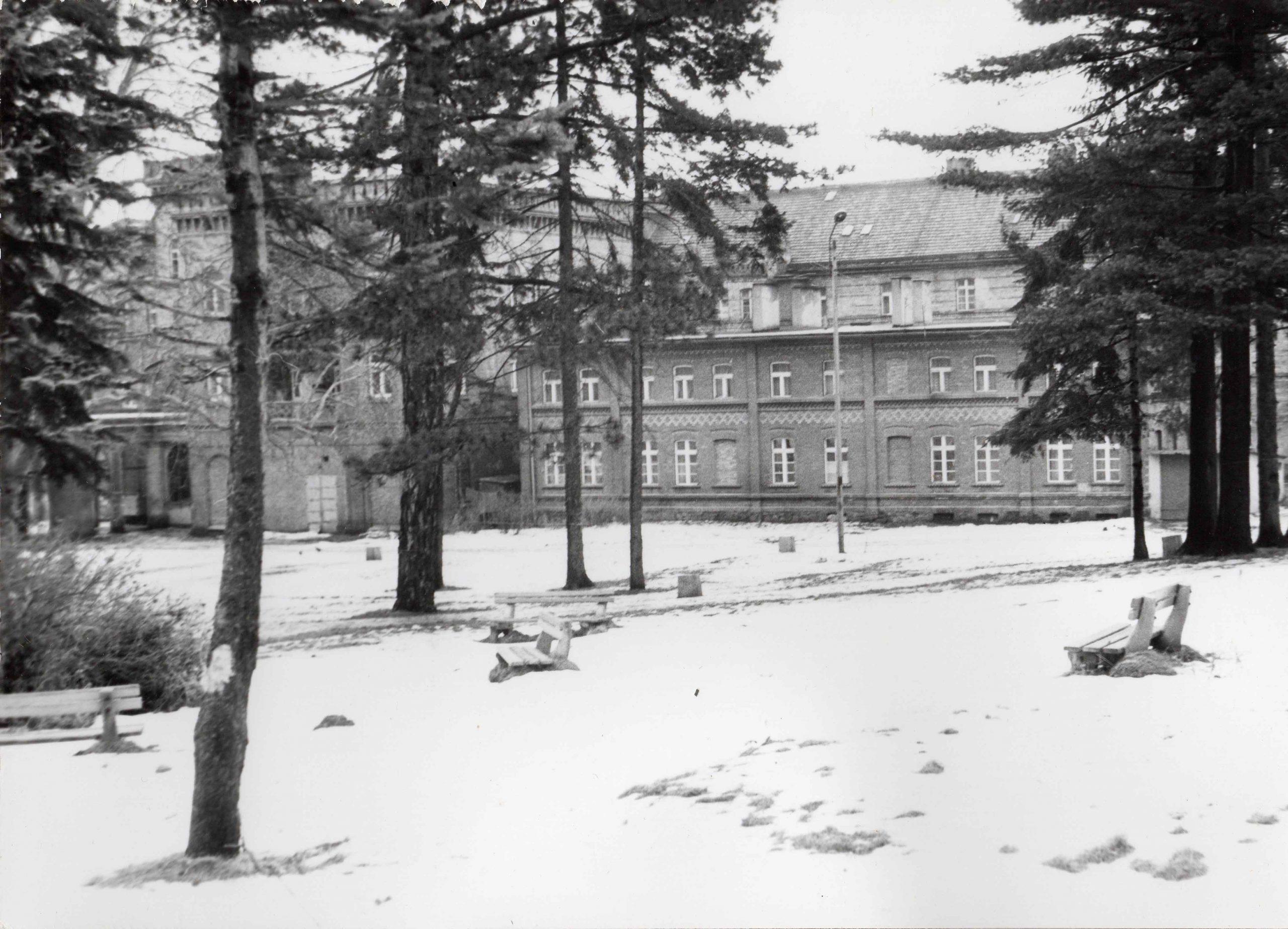 Ewidencja żarowskiego założenia ogrodowo-parkowego 1987 (3)