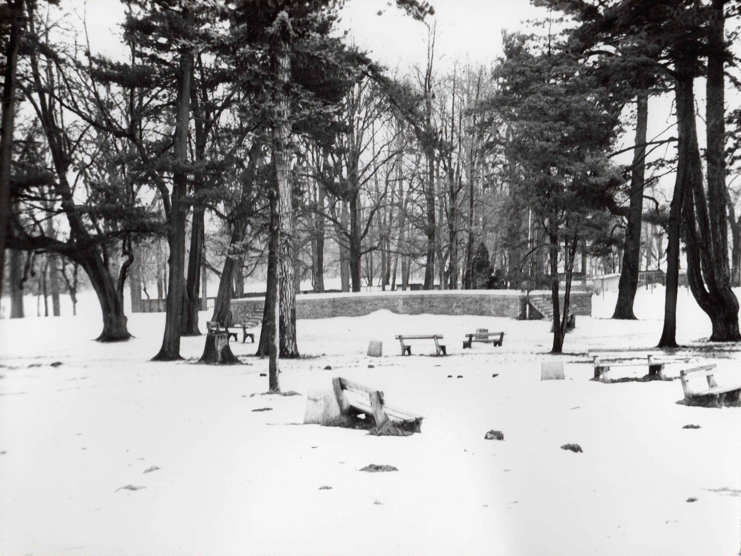 Ewidencja żarowskiego założenia ogrodowo-parkowego 1987 (4)