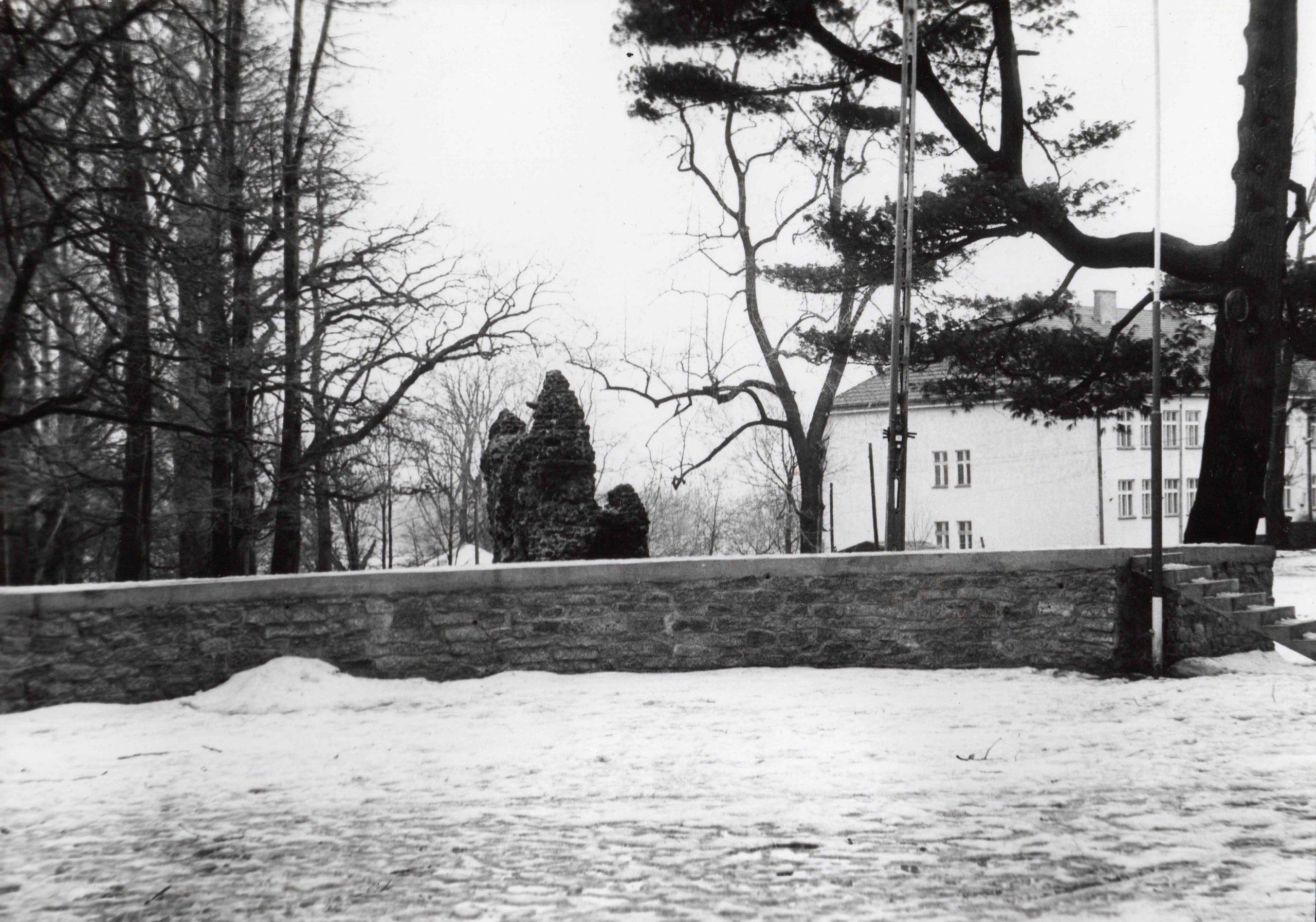 Ewidencja żarowskiego założenia ogrodowo-parkowego 1987 (7)