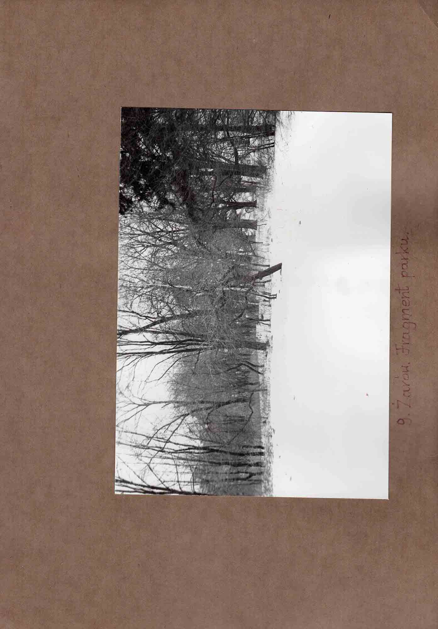 Ewidencja założenia ogrodowo-parkowego 1987 dokument (23)