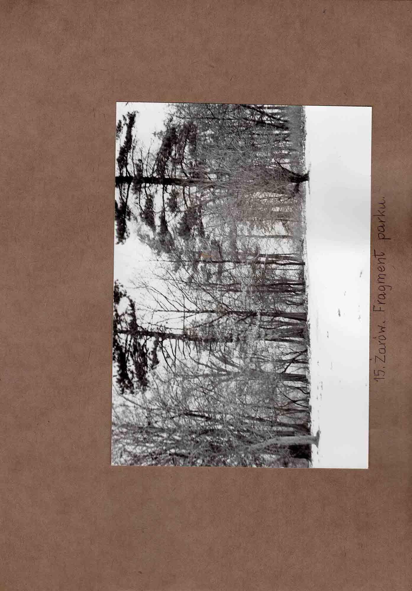 Ewidencja założenia ogrodowo-parkowego 1987 dokument (29)